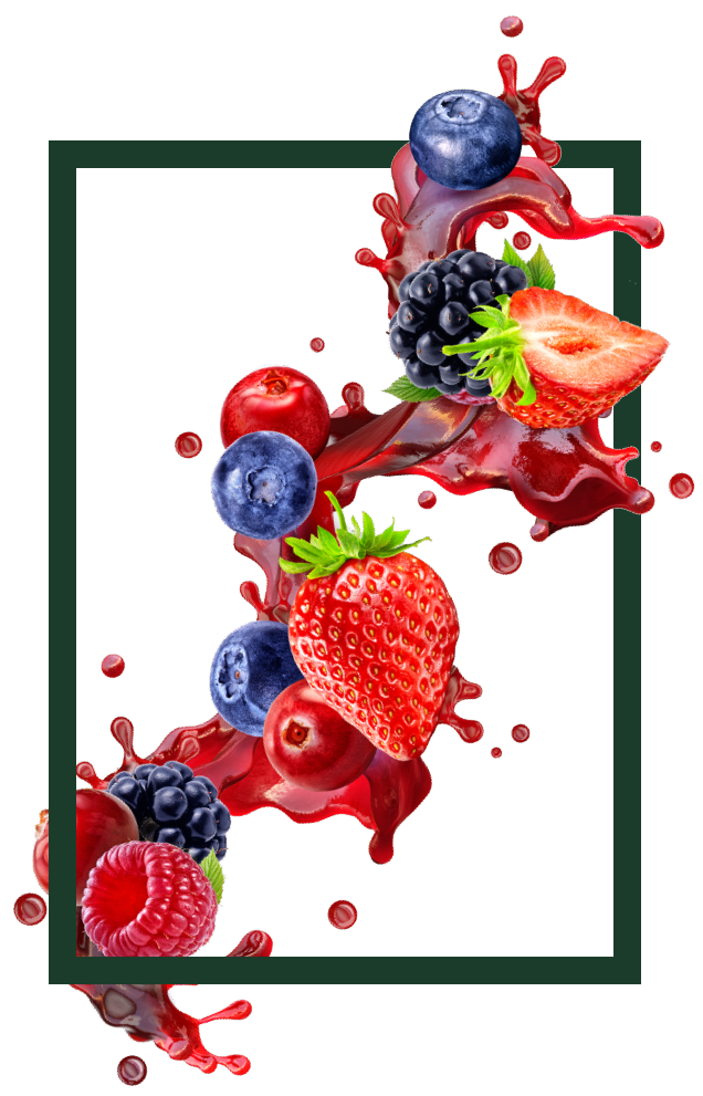 SGT Gurme Meyve Çayları